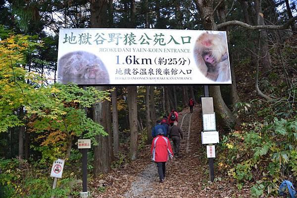 日本日光箱根 497.jpg