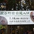 日本日光箱根 498.jpg