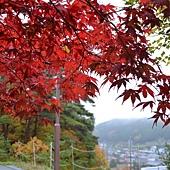 日本日光箱根 798.jpg