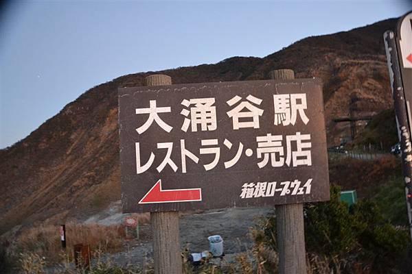 日本日光箱根 1019.jpg