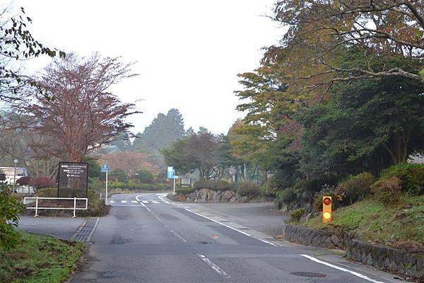 日本日光箱根 1043.jpg