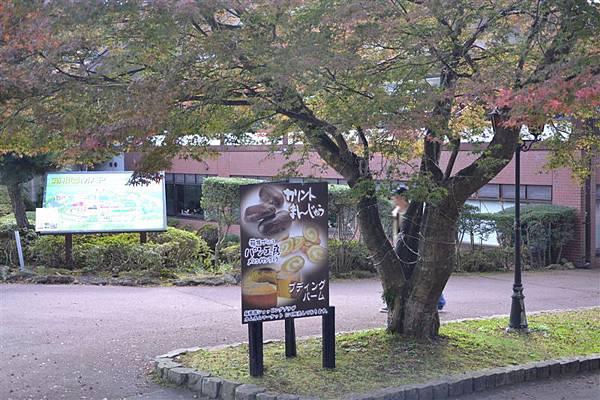 日本日光箱根 1081.jpg