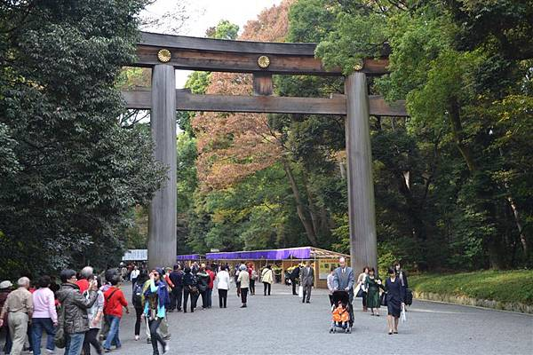 日本日光箱根 1084.jpg