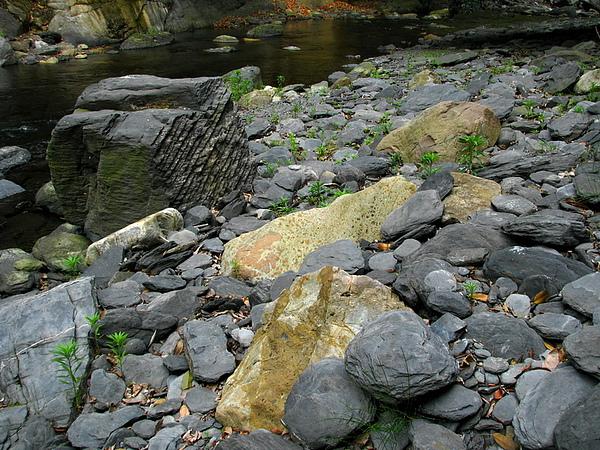 河床上的奇石.jpg