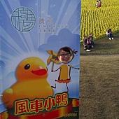 黃色小鴨合影