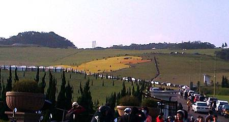 地表最大黃色小鴨