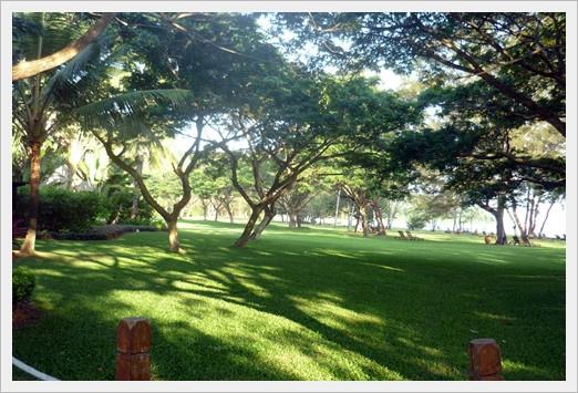 沙巴20110713 583.jpg