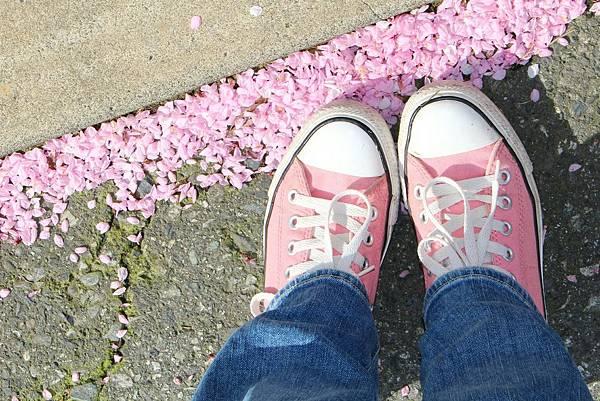 spring-1195428_1920.jpg