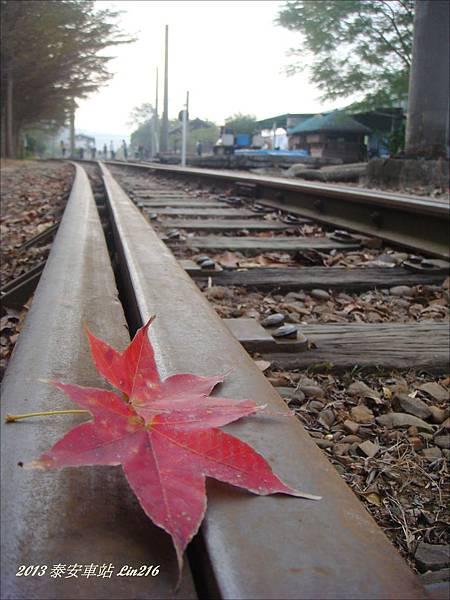 2013泰安鐵道 057-1.jpg