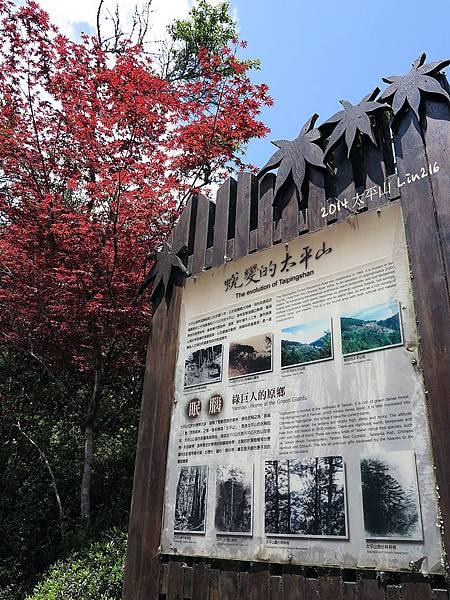 2014太平山公會旅遊 312