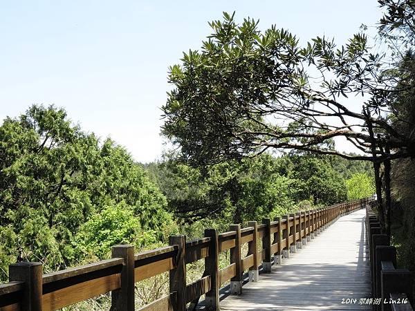 2014太平山公會旅遊 284
