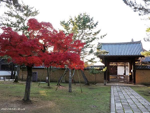 2014京阪神紅葉季 374