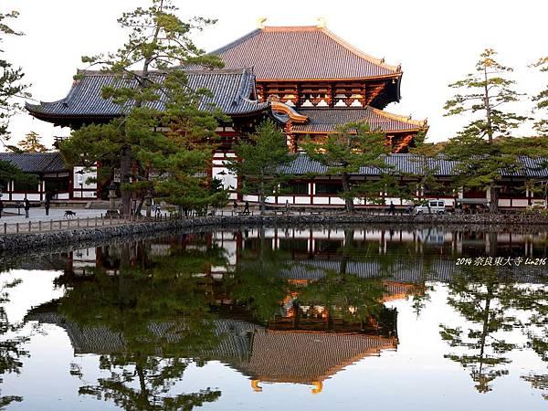 2014京阪神紅葉季 483