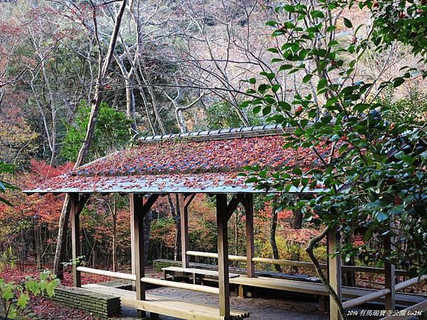 2014京阪神紅葉季 696
