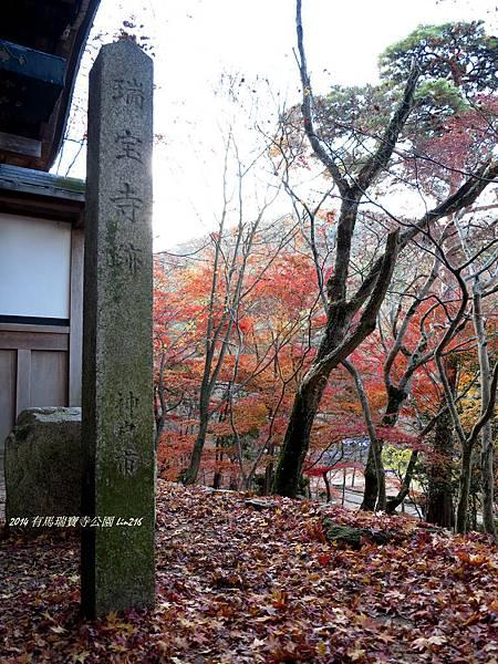 2014京阪神紅葉季 638