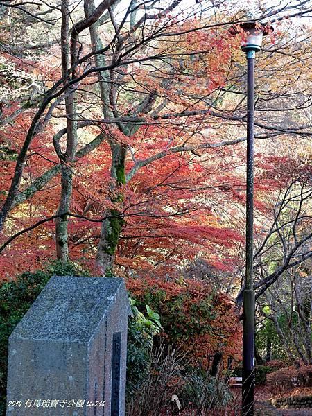 2014京阪神紅葉季 628