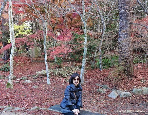 2014京阪神紅葉季 664-1