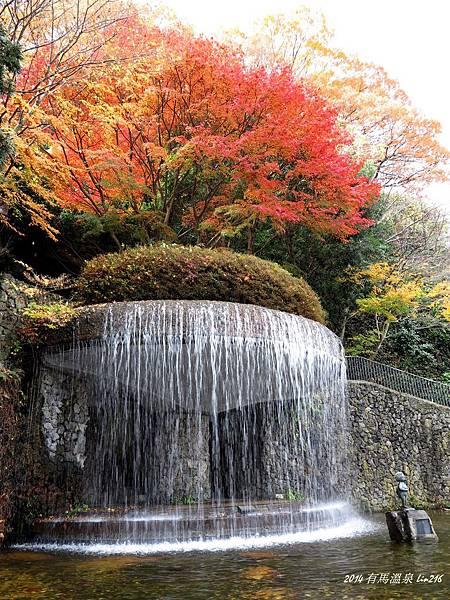 2014京阪神紅葉季 800