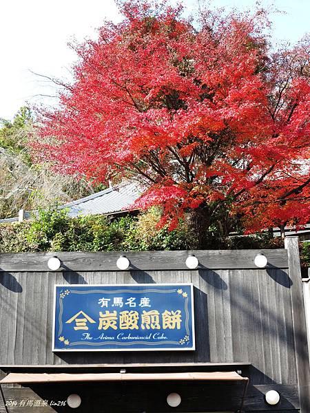 2014京阪神紅葉季 787