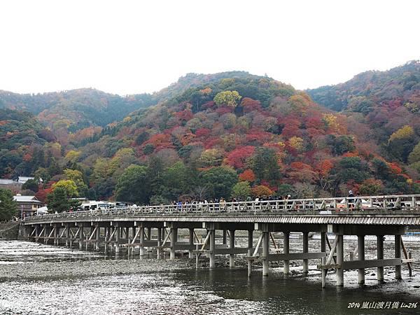 2014京阪神紅葉季 824_副本