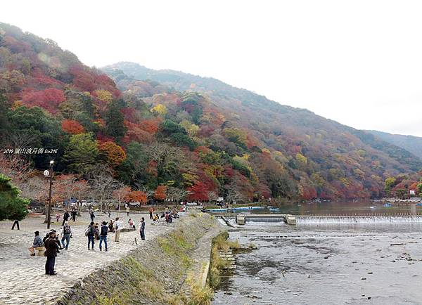 2014京阪神紅葉季 869