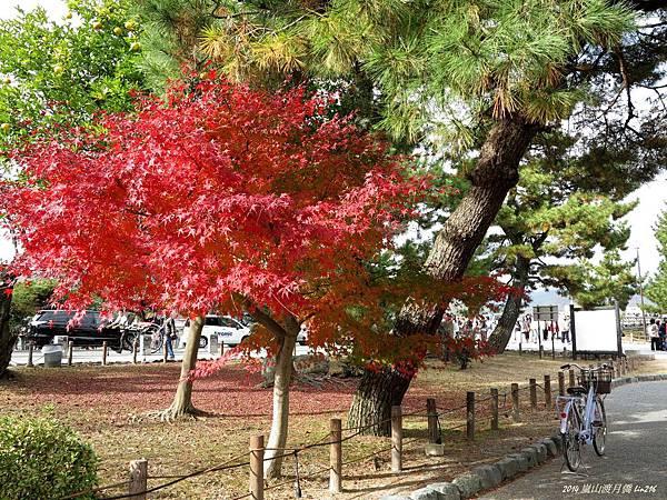 2014京阪神紅葉季 831_副本