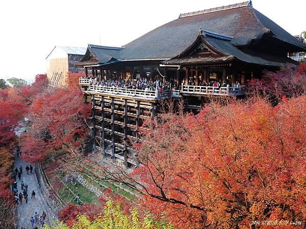 2014京阪神紅葉季 976_副本