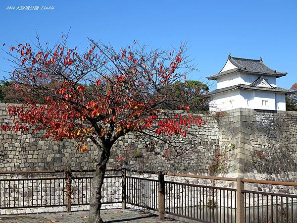 2014京阪神紅葉季 1336