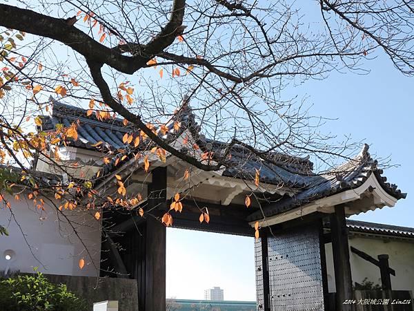 2014京阪神紅葉季 1315