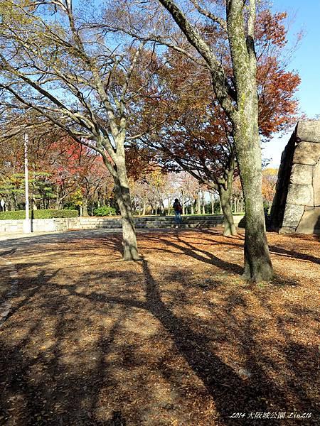 2014京阪神紅葉季 1326