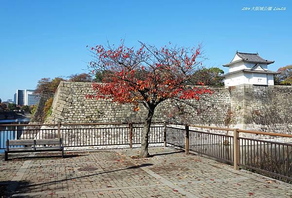 2014京阪神紅葉季 1335