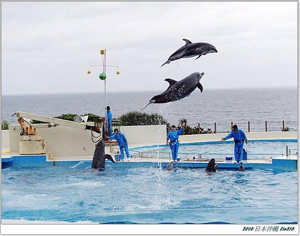 2016日本沖繩 308