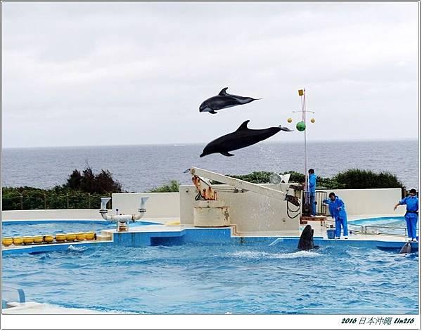 2016日本沖繩 309