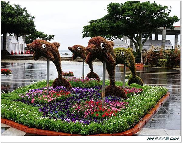 2016日本沖繩 376
