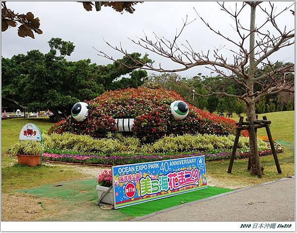 2016日本沖繩 368