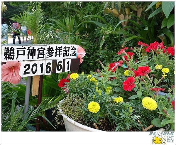 2016黃金公主號郵輪 1270