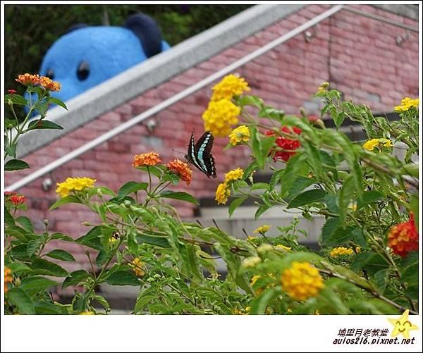 8月埔里元首館 (8)