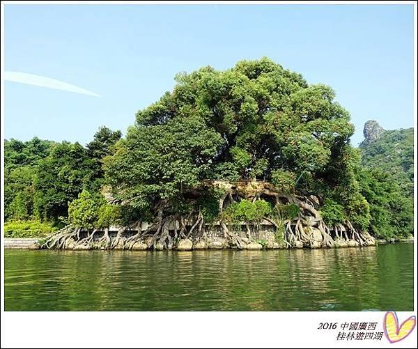2016九月桂林陽朔 1063