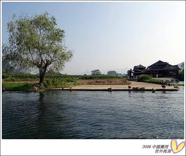 2016九月桂林陽朔 441