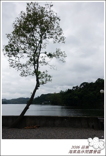 2016海棠島 (16)