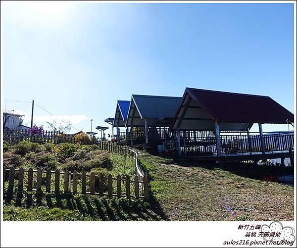 天闊營地 374