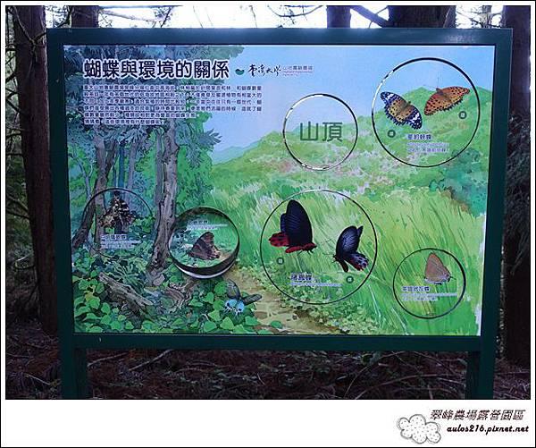 2017翠峰農場22露 (86)