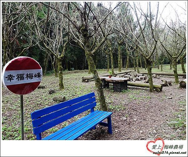 梅峰農場 (230)