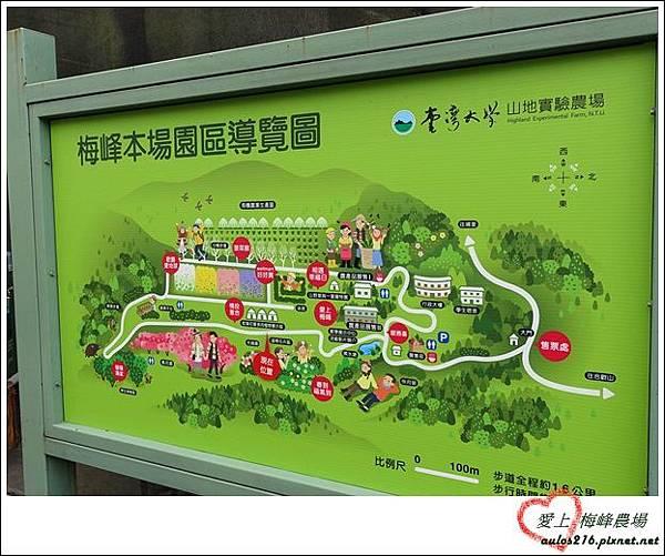 梅峰農場 (162)