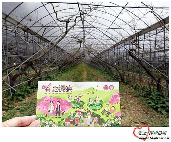 梅峰農場 (215)