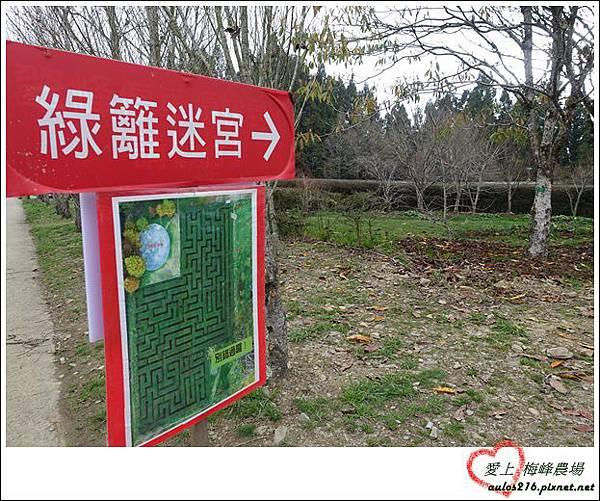 梅峰農場 (301)