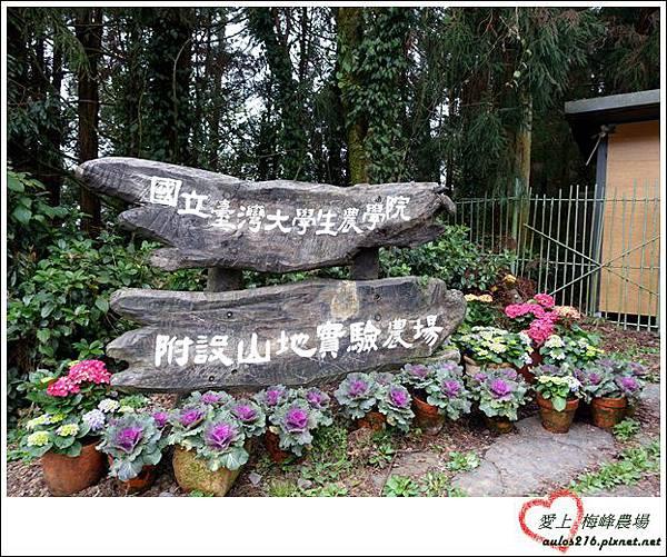 梅峰農場 (448)
