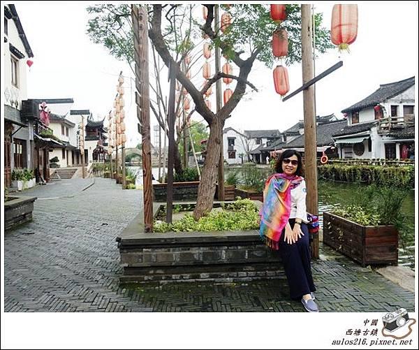 西塘古鎮 (323)