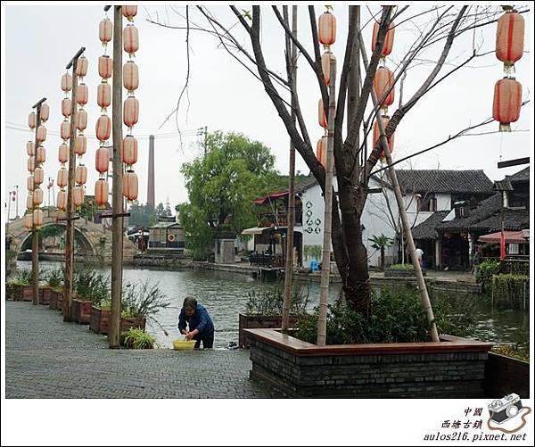 西塘古鎮 (319)