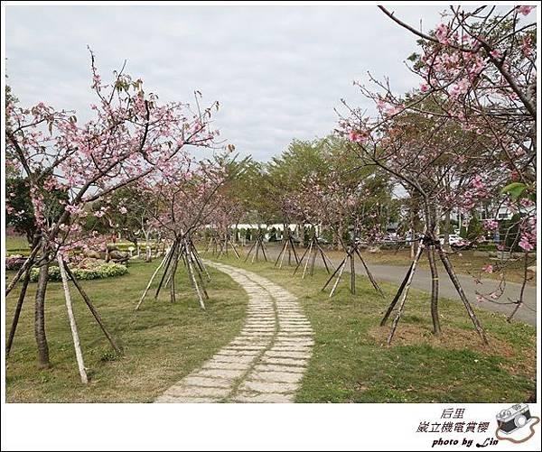 3月葳立機電賞櫻 (39)